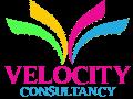 Velocity Consultancy