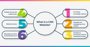 What is a CMS Website?